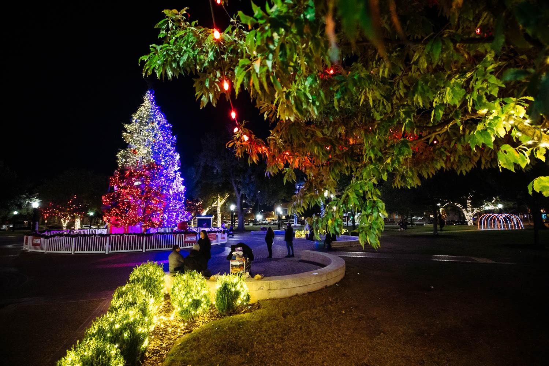 Christmas Tree in Travis Park taken Dec. 1, 2020. Photo by Chris Stokes   Heron contributor