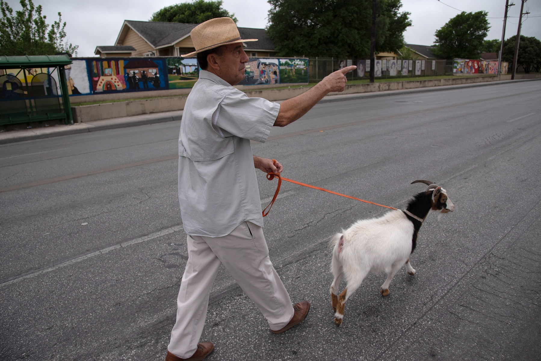 Walter Martinez, former District 5 councilman, walks while talking alongside his goat Charlie before San Antonio's 23rd annual César E. Chávez March for Justice on Guadalupe Street on Saturday, March 30. Photo by V. Finster | Heron