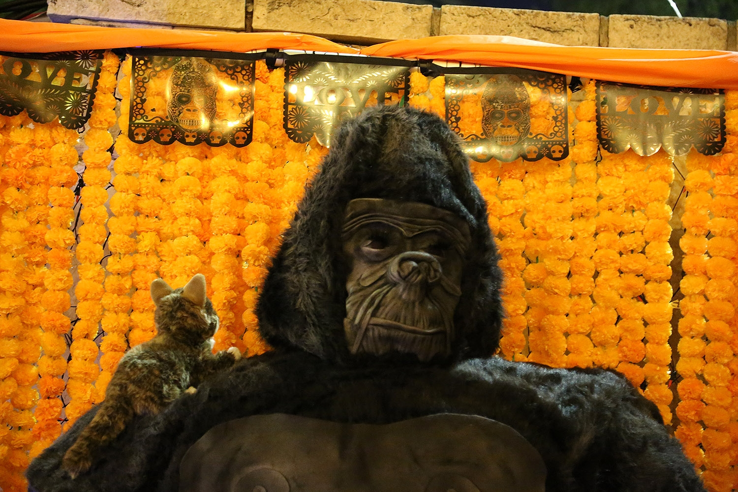 This piece by David Garcia pays tribute to Koko, the gorilla who died at 46, and who could communicate using sign language. <em><b>Photo by Ben Olivo | Heron</b></em>
