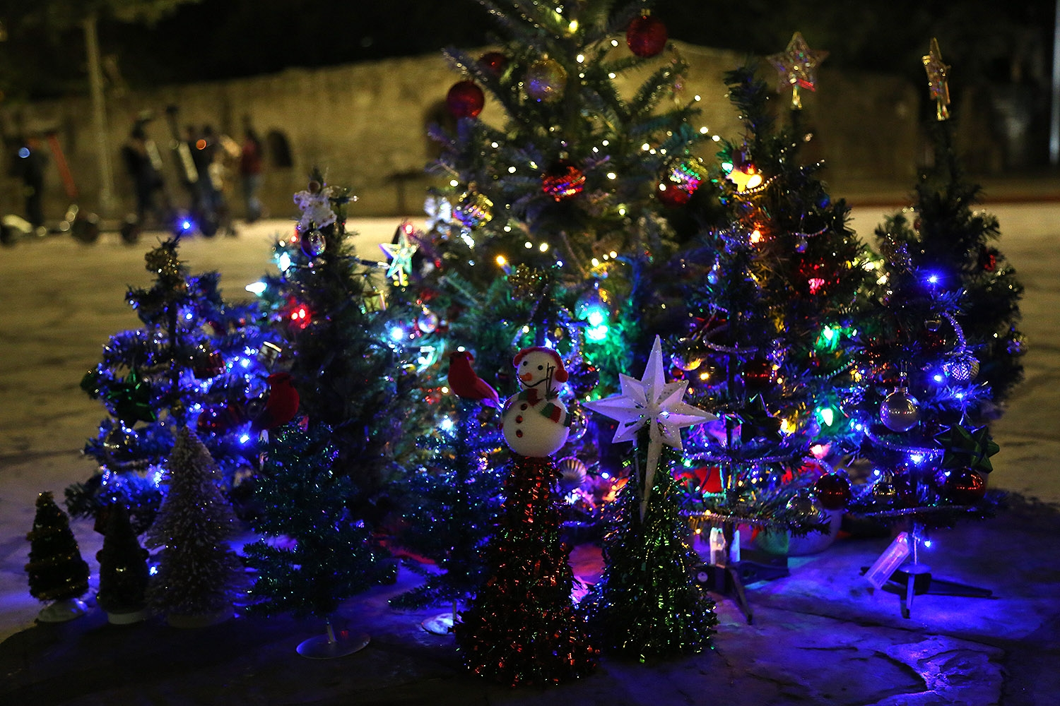 Mini Christmas trees are placed in front of the Alamo in protest of the 50-foot tree's relocation to Travis Park last year. <em><b>Photo by Ben Olivo | Heron</b></em>